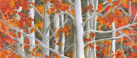 Dogwoods-Orange by Kira Pierce Fine Art Print