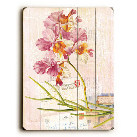 Pink Orchid by Artist Cory Steffen Wood Sign