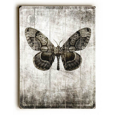 Butterfly by Gi Art Lab Wood Sign