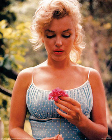 Marilyn Monroe Flower Celebrity Poster by Sam Shaw