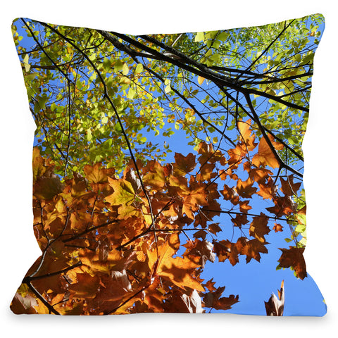 """Autumn Color"" Indoor Throw Pillow by Lisa Argyropoulos, 16""x16"""