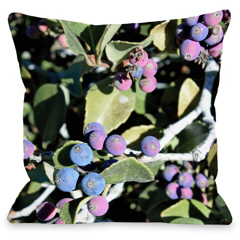"""Berries"" Outdoor Throw Pillow by Lisa Argyropoulos, 16""x16"""