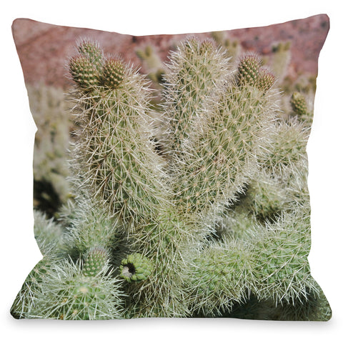 """Desert Cactus"" Outdoor Throw Pillow by Lisa Argyropoulos, 16""x16"""
