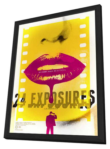 24 Exposures 11x17 Framed Movie Poster (2014)