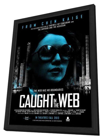 Caught in the Web 11x17 Framed Movie Poster (2013)