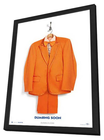 Dumb and Dumber To 11x17 Framed Movie Poster (2014)