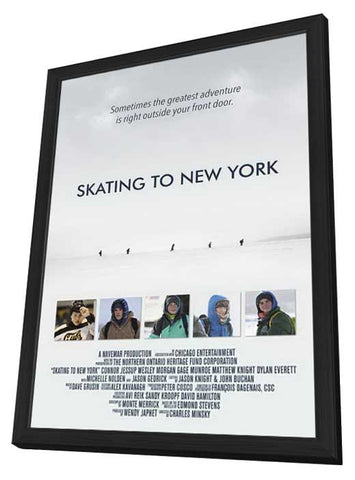 The Cold Light of Day 11x17 Framed Movie Poster (2012)