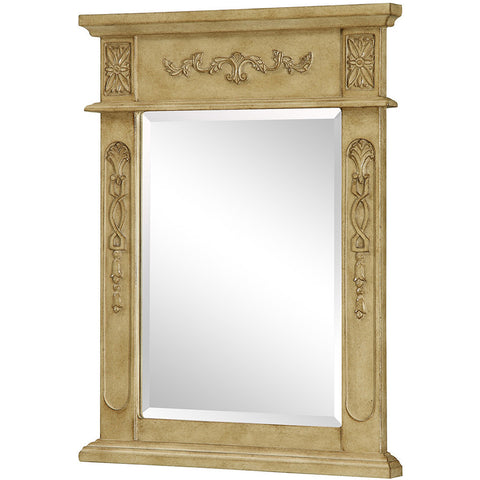 "Danville 22""x28"" Vanity Mirror, Antique Beige"