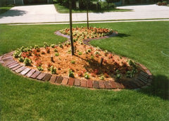 Landscaping ~ Antique Street Brick