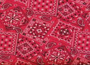 Cooling Forehead Pads - Blazing Bandana Red