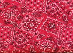 Blazing Bandana Red Cooling Neck Wrap