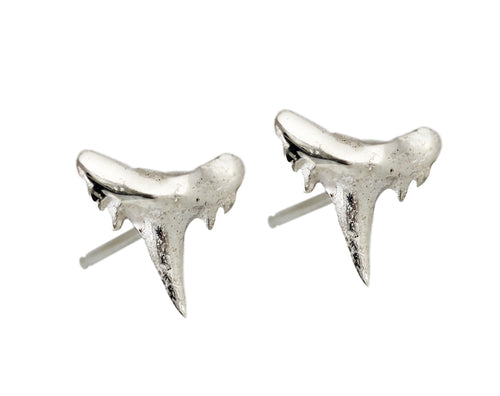 SHARK TOOTH STUDS