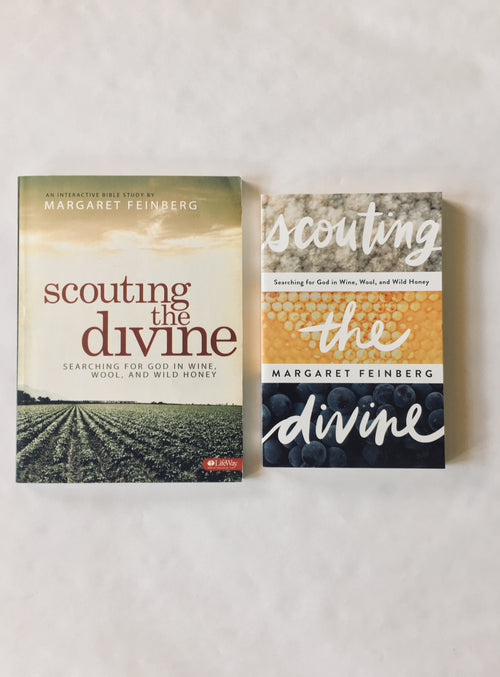 Scouting the Divine Book & Workbook Combination