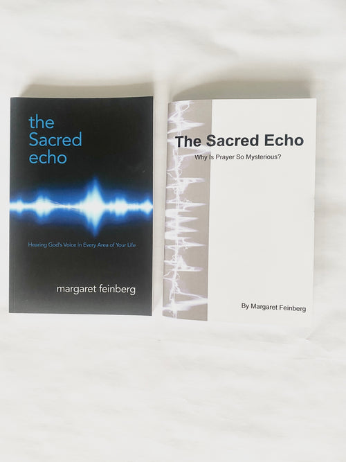 The Sacred Echo Book & Workbook Combination