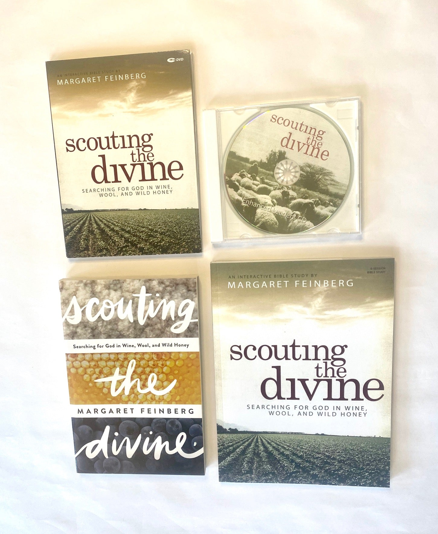 Scouting the Divine 6-Session DVD Bible Study Kit