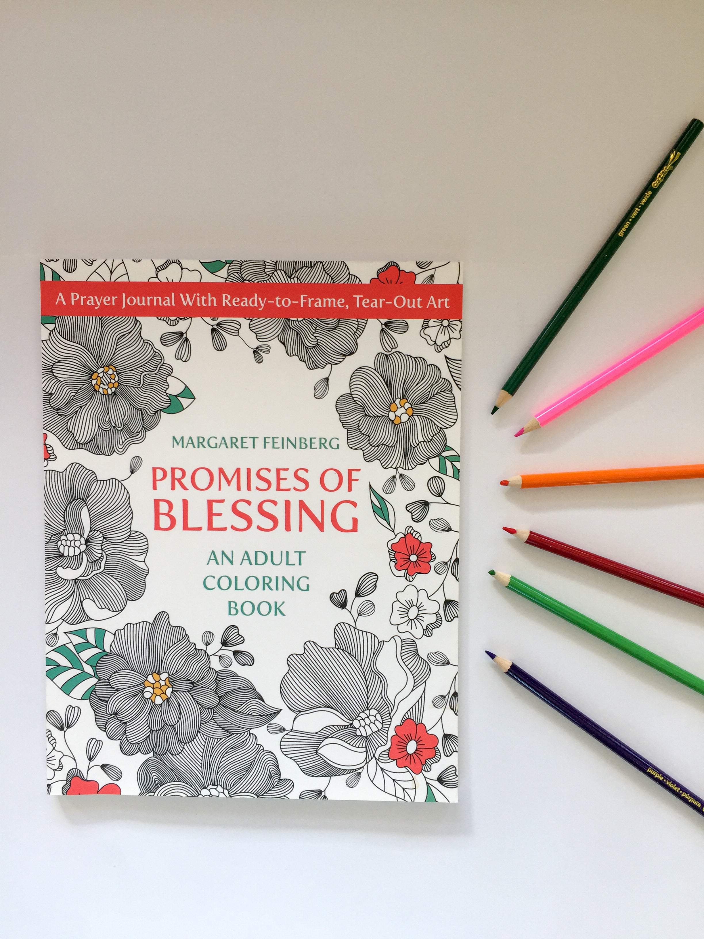 Promises of Blessing: An Adult Coloring Book