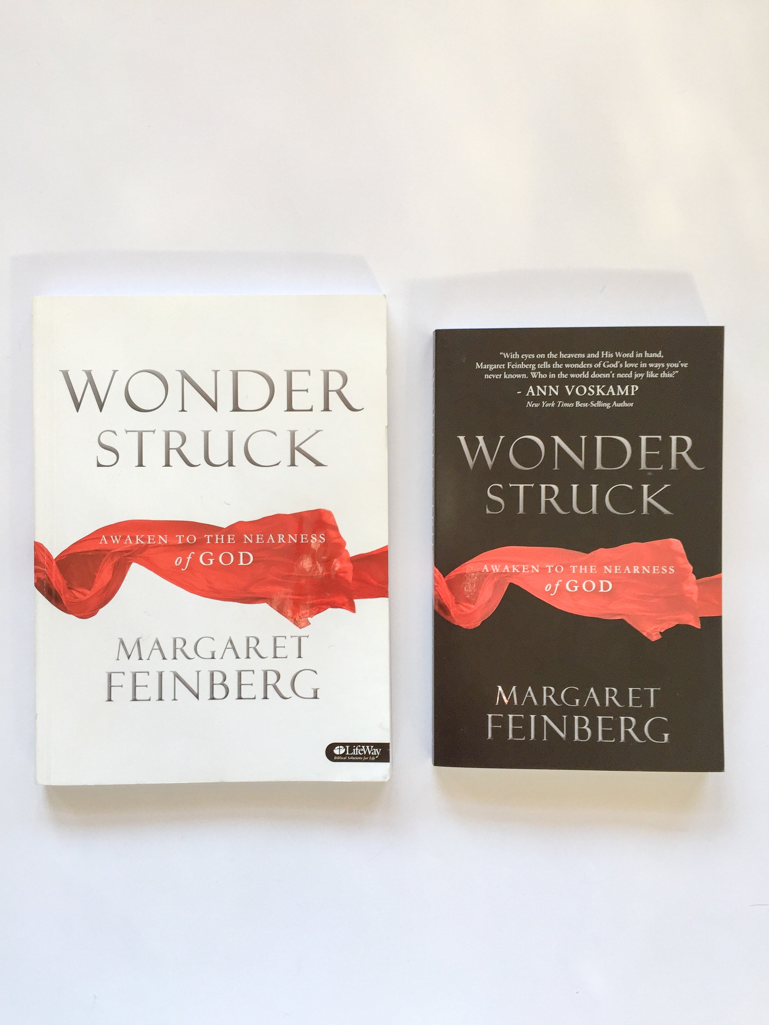 Wonderstruck Book & Workbook Combination