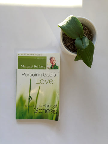 Pursuing God's Beauty: Stories from the Gospel of John Workbook