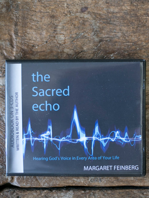 The Sacred Echo Instant Audiobook Download