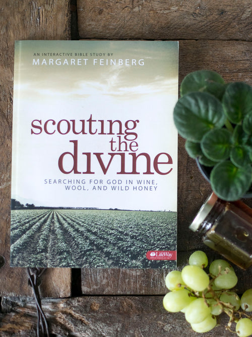 Scouting the Divine Additional Workbook