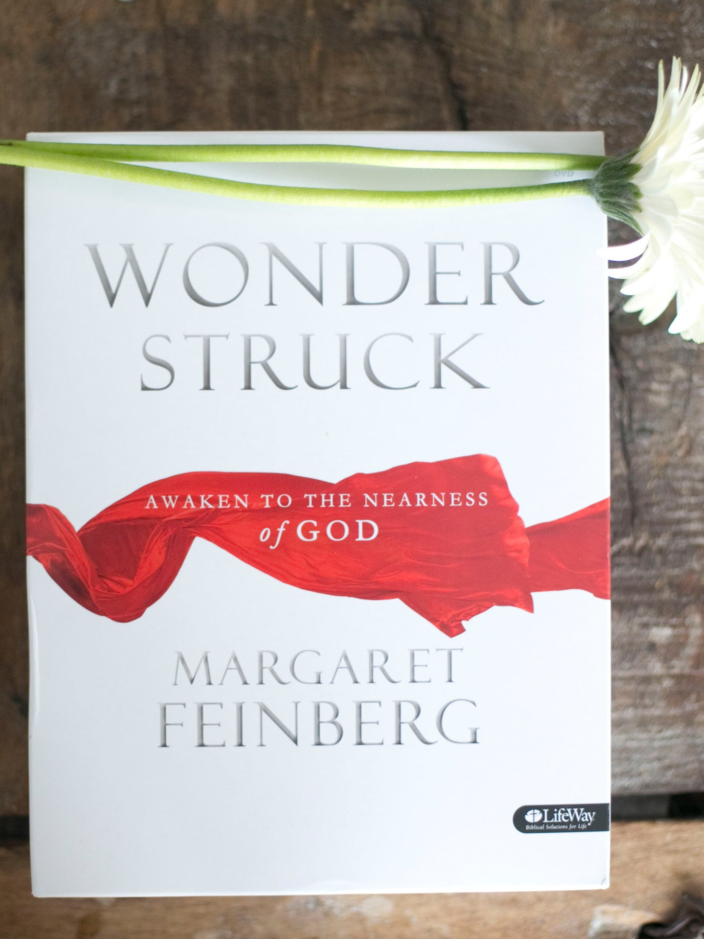Wonderstruck DVD Bible Study Kit + FREE Pocketful of Promises Coloring Book