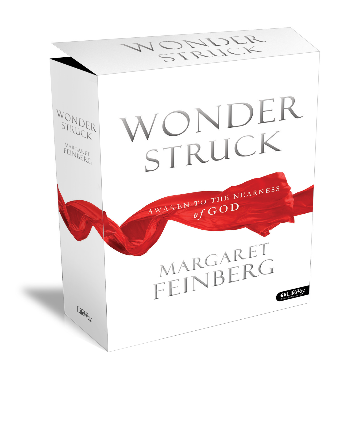 Wonderstruck 7-Session DVD Bible Study