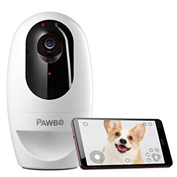 Pet Camera for Smartphones - Spy Shop SA