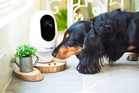 Pet Camera for Smartphones
