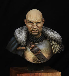 Medieval Mercenary Historical Bust