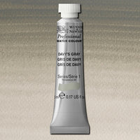 Professional water colour,  217 Davys Grey S1  5 ml