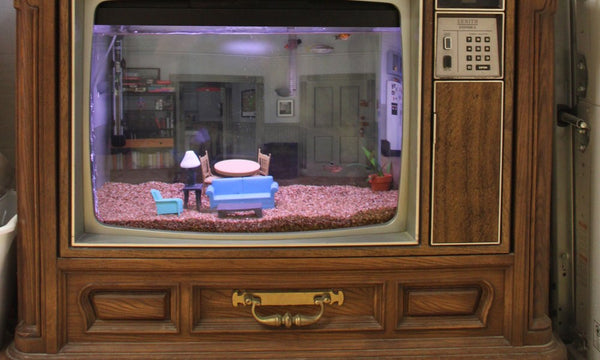 Make An Aquarium Out of An Old Television