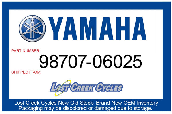 Yamaha Screw, Flat Head 98707-06025-00