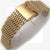 20mm Shark Mesh Band Gold Plated  Flatten