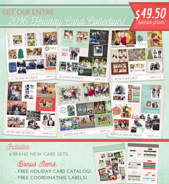 2016 ENTIRE Holiday Card Collection Bundle