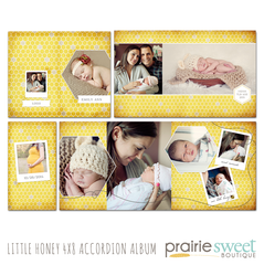 Little Honey 4x8 Accordion Album