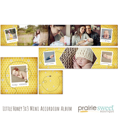 Little Honey 3x3 Accordion Album