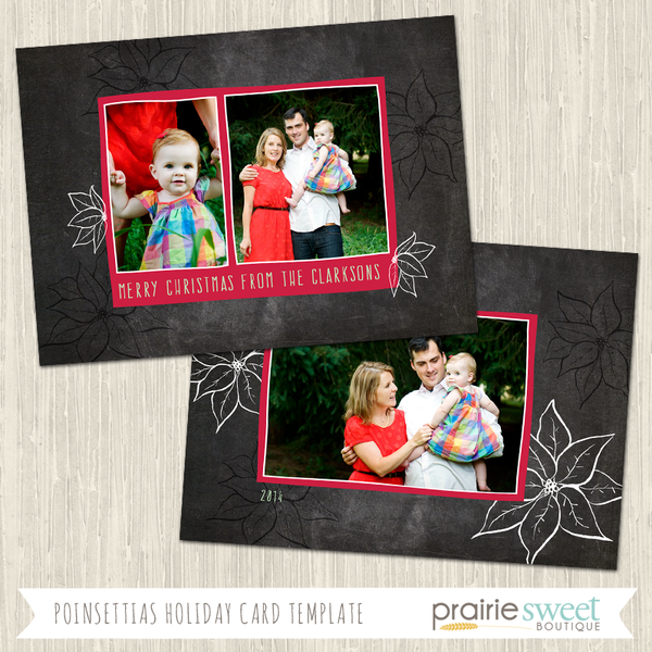 POINSETTIA | Chalkboard Cheer Vol 2 Holiday Card