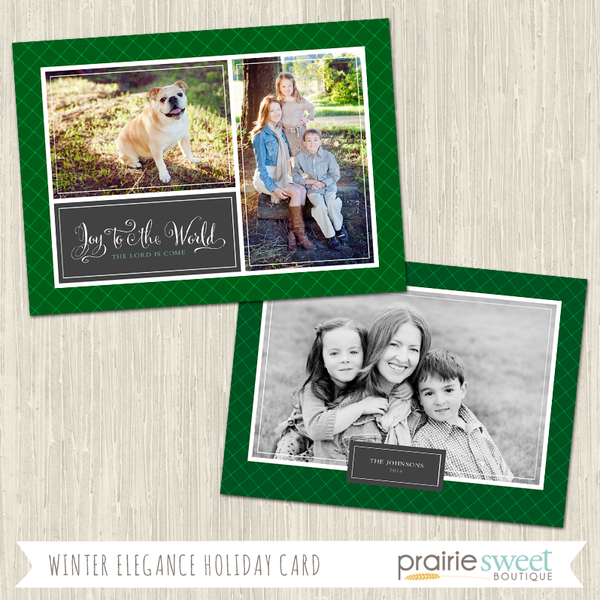 JOY TO THE WORLD | Winter Elegance Holiday Card