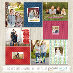 Bold and Bright Overlay Holiday Card Collection