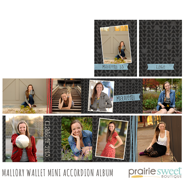 Mallory Wallet Accordion Album