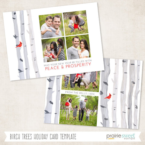 Birch Trees | All is Calm Holiday Card