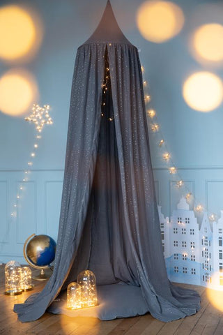 Grey Canopy with Gold Dots