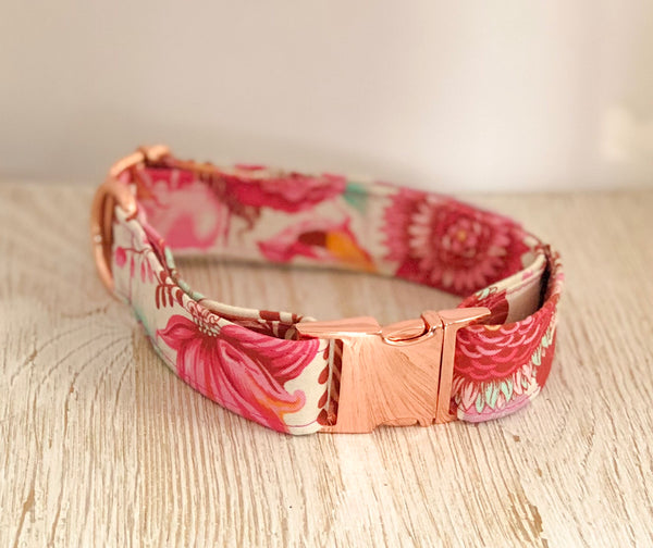 Tula Pink Dog Collar - Foxtrot