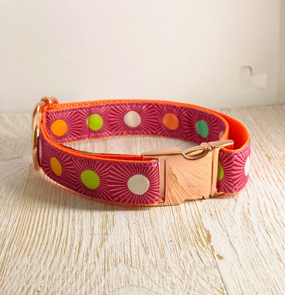 "Tula Pink Dog Collar - ""Burst"" in Pink"
