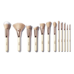 Blogger's Choice Brush Set