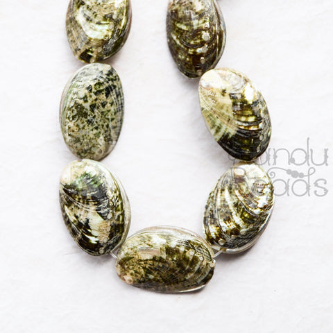 Puffy Abalone Shell Beads 20x30x10 mm