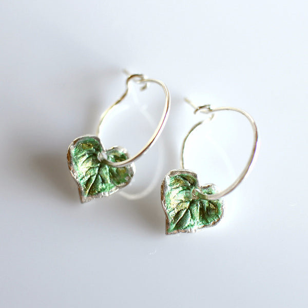 Kawakawa leaf hoop earrings