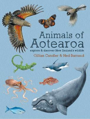 Animals of Aotearoa: Explore & Discover New Zealand's Wildlife
