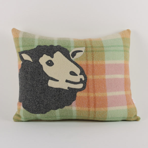 Sheep cushion - check background