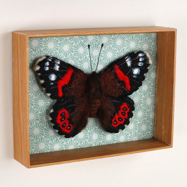 NZ Red Admiral - framed